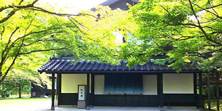 #08 湯宿さか本 主人 坂本新一郎